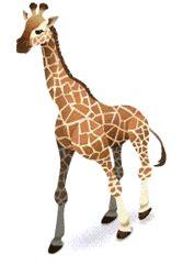 imagenes de jirafas animados jirafas animadas auto design tech