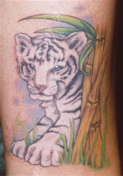 tiger and cub tattoo designs white tiger cub pictures