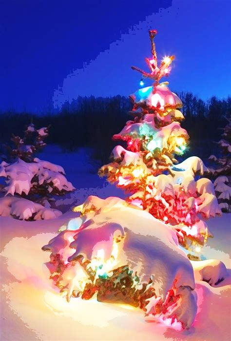 christmas tree in snow picture christmas lights decoration