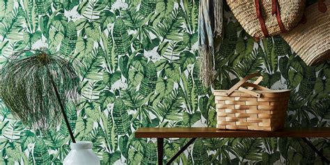 19 best jungle decor for 2018 banana leaf palm tree