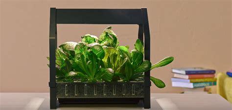 ikea krydda växer ikea cr 233 e un kit pour cultiver un potager en appartement