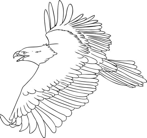 coloring page eagle flying free printable eagle coloring pages for kids