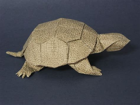Turtle Origami - index of origami oripics turtle