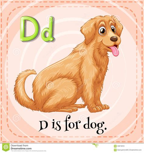 is for dogs flashcard letter d is for stock illustration illustration of living flashcard