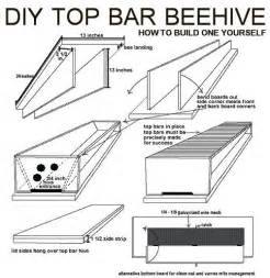 top bar beehive do it yourself helpful tips diy
