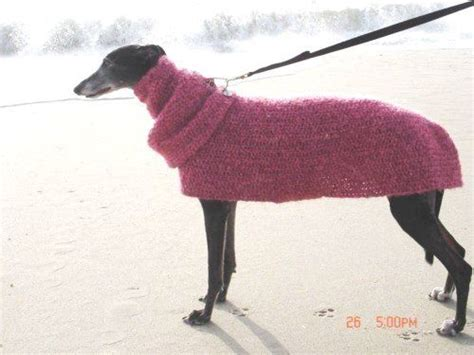 knitted greyhound sweater pattern quick and easy greyhound dog sweater crochet pattern with