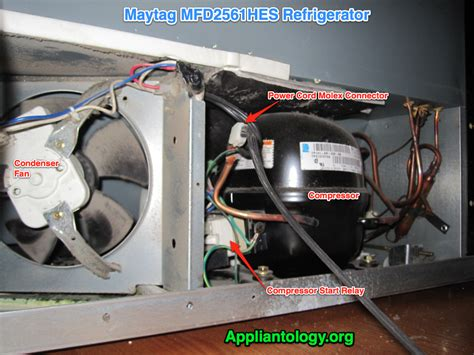 refrigerator condenser fan not working compressor compartment anatomy in a maytag mfd2561hes