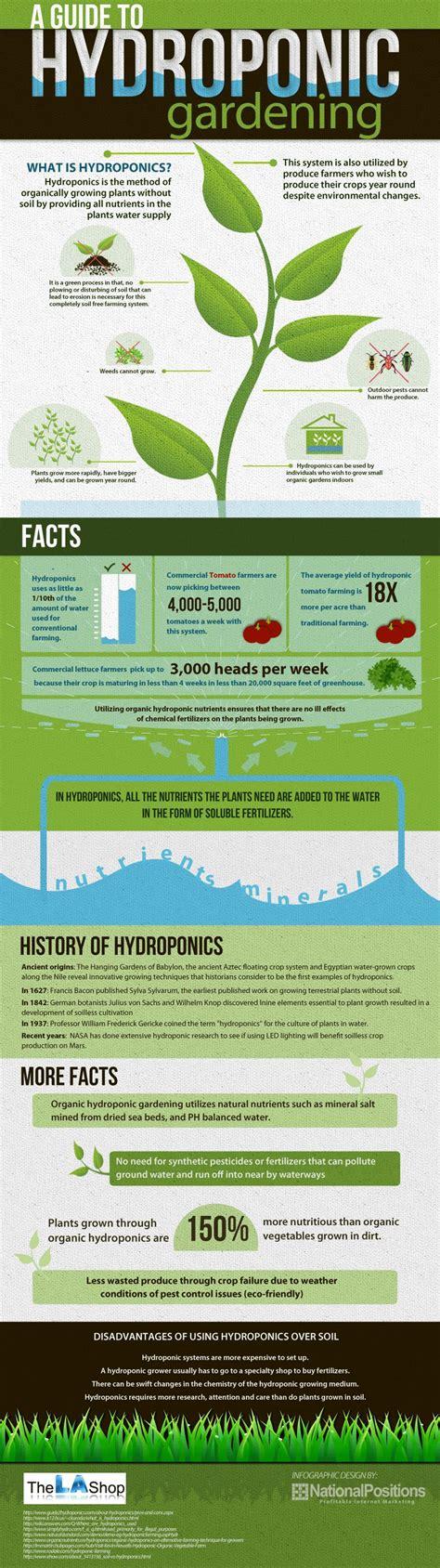 Garden Info Top 7 Gardening Infographics Infographics Graphs Net