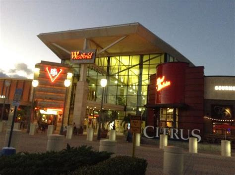 waldenbooks citrus park mall mall in ta picture of westfield citrus park ta