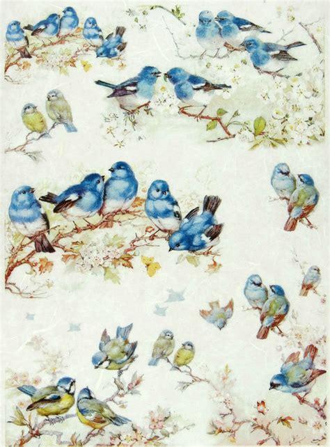 Bird Decoupage Paper - rice paper for decoupage decopatch scrapbook craft sheet