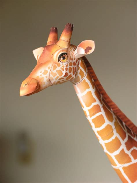 Papercraft Giraffe - giraffe canon papercraft by larry san on deviantart