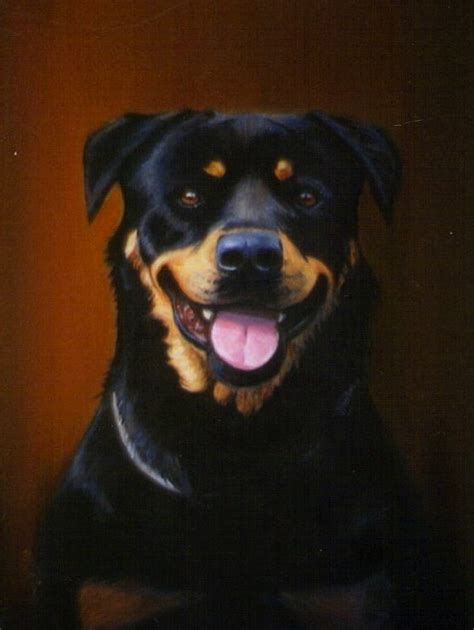 how much is a rottweiler 1000 ideas about rottweiler on rottweilers rottweiler puppies and rottweiler