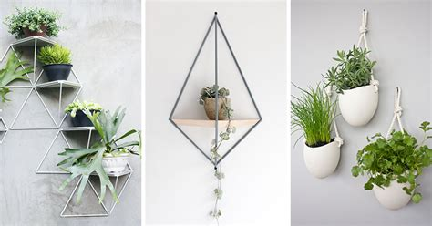 wall plant holders 10 modern wall mounted plant holders to decorate bare