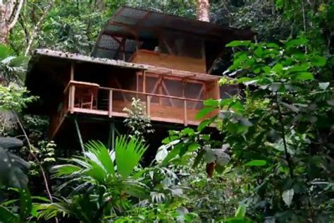 treehouse community finca bellavista in costa rica is the ultimate treehouse