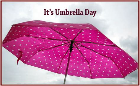 It's Umbrella Day   Scarsdale Premier Insurance Agency
