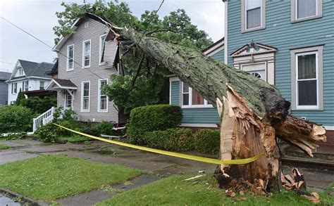 home insurance trees close to house home insurance trees to house 28 images what to do when a tree falls on your house