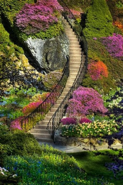 kawachi fuji garden kawachi fuji gardens japan nature s colors