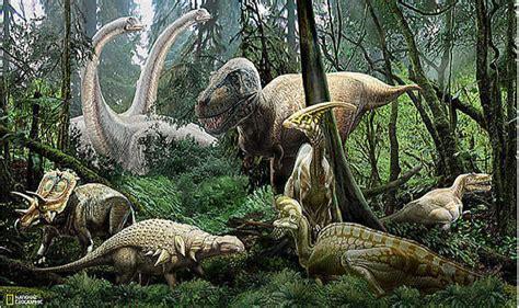 national geographic wall mural national geographic dinosaur mural ng94615