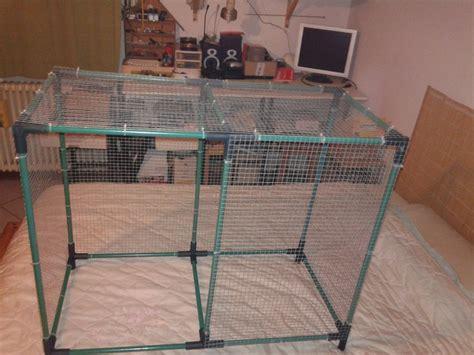 gabbia per cocorite gabbia cocorite cocorite e pappagallini ondulati