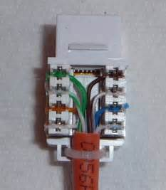 cat 6 connector wiring diagram wall cat uncategorized free wiring diagrams