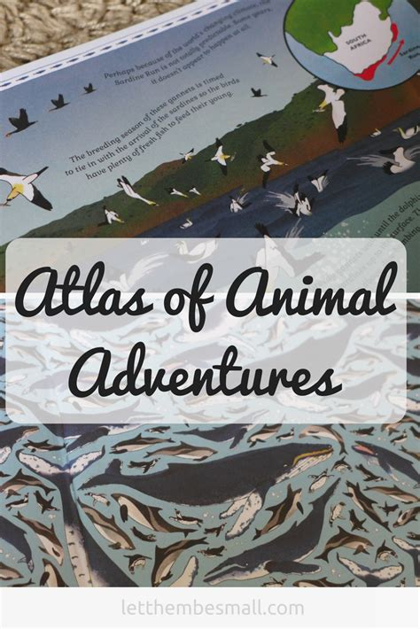 atlas of animal adventures atlas of animal adventures