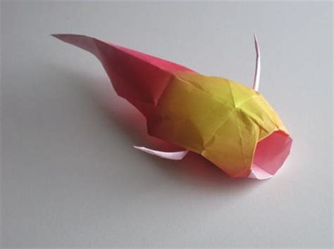 How To Make A Origami Koi Fish - completed origami koi origami paper crafts
