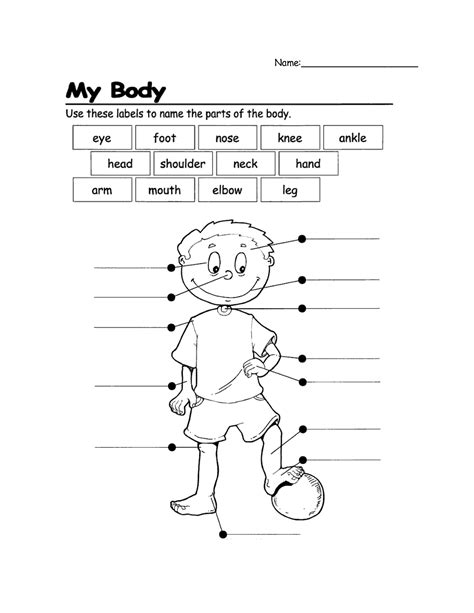 printable activities for children parts of the body name parts of the body first grade yahoo image search