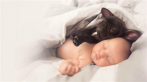 baby and puppy pictures of baby and puppy bonding are so sweet it actually hurts
