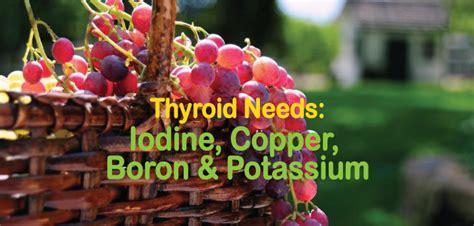 Boron And Iodine Detox by Thyroid Needs Iodine Copper Boron And Potassium