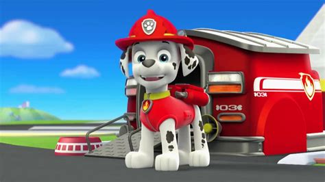 paw patrol characters paw patrol marshall and paw patrol badge paw patrol character spot marshall youtube