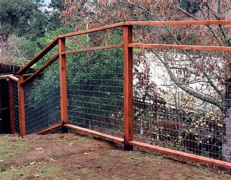 how to keep dog in yard without fence 1000 images about walls on pinterest gabion wall fence