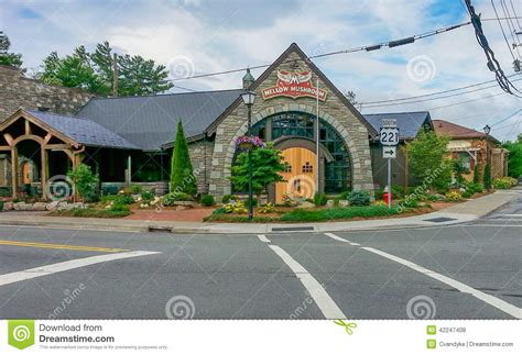 beautifully designed mellow mushroom restaurant blowing rock north caro