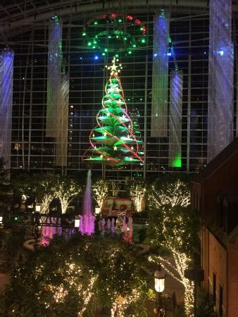 national harbor tree lighting christmas tree lights show picture of gaylord national