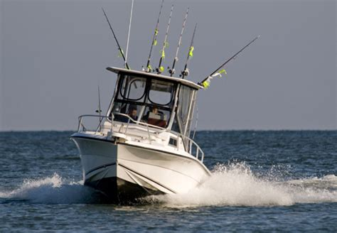 boat captain license levels charter boat and guides