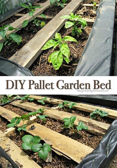 pallet raised bed diy pallet garden how to make raised wood pallet garden bed