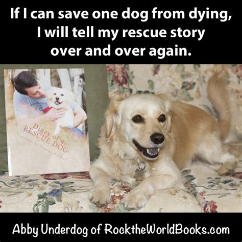 quotes about dogs dying quotes about dogs dying