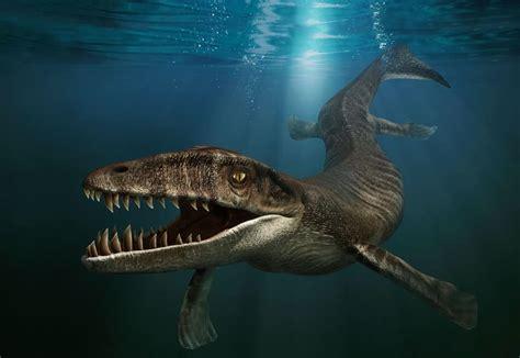 Sea Animal 2 by Prehistoric Marine Animals