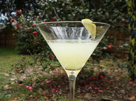 martini limoncello best 25 limoncello martini ideas on pinterest