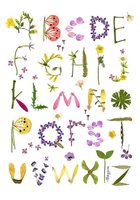 printable alphabet letters with flowers herbarium alphabet flower poster alphabet poster