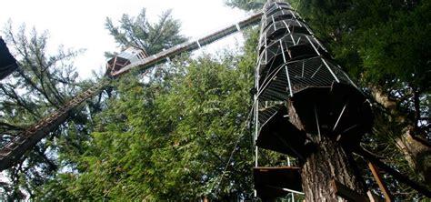cedar creek treehouse washington cedar creek treehouse at mt rainier ashford roadtrippers