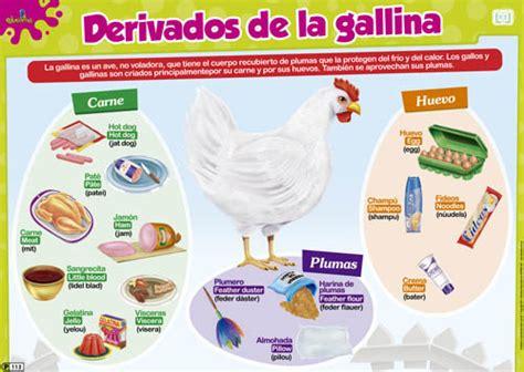 derivados de los animales derivados de la gallina editorial educativa per 250 2014