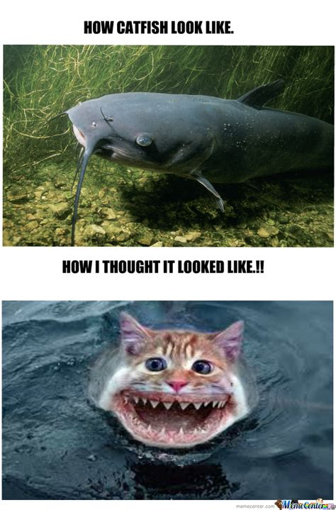 Catfish Meme - catfish by repio meme center