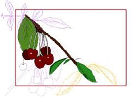 Etiketten Kirsch Marmelade by Einkochen Etiketten F 252 R Marmelade Zum Ausdrucken