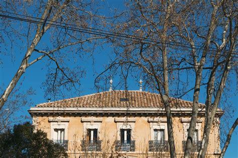 baum architektur kostenloses foto zum thema architektur baum blauer himmel