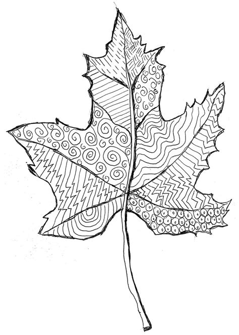 line drawing templates grovecrest fall leaf line drawing