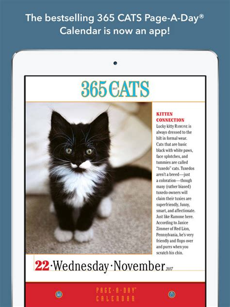365 cats page a day calendar 1523500794 365 cats page a day calendar 2017 iphone ipad game reviews appspy com