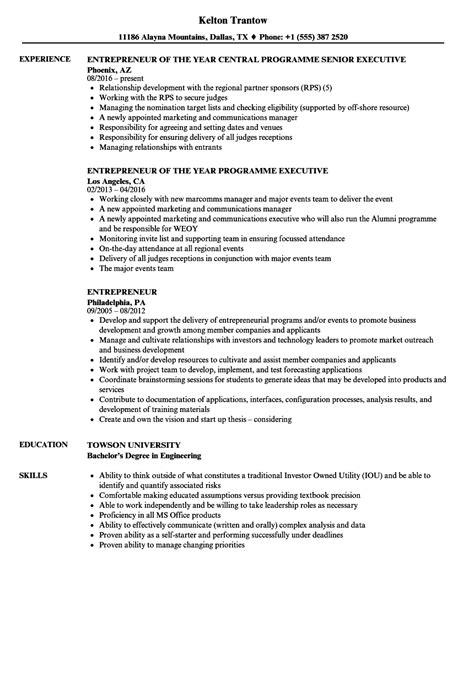 entrepreneur resume template entrepreneur sle resume inventory auditor sle resume