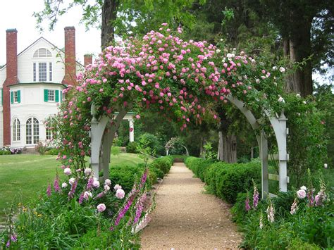 rose arbor and trellis my garden plans pinterest belmont estate rose arbor with thousand beauties roses