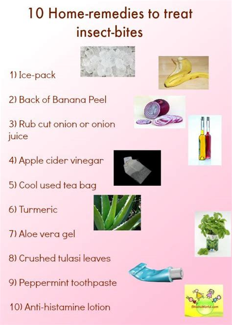 aid home remedies  insect bites