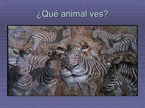 imagenes opticas de animales ilusiones 243 pticas1